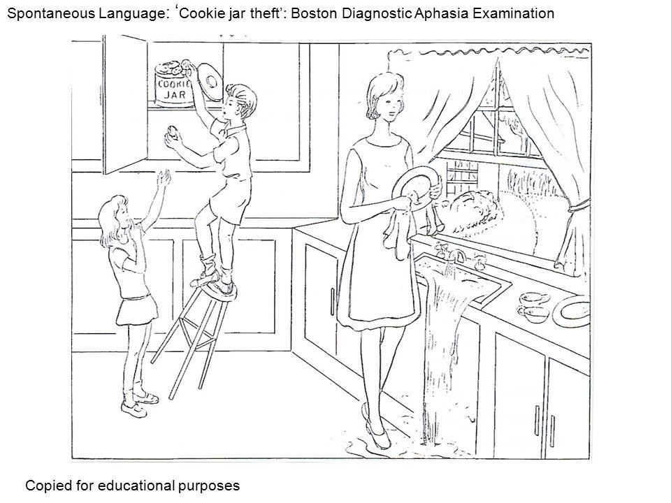 Spontaneous Language : ' Cookie jar theft': Boston Diagnostic Aphasia Examination Copied for educational purposes