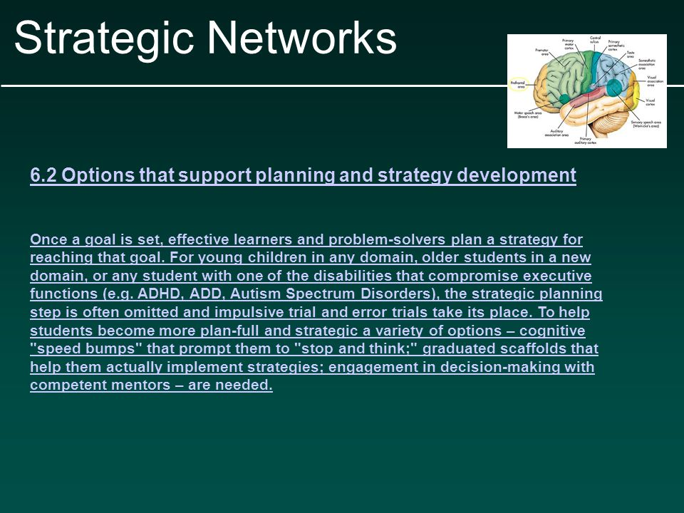 Strategic Networks 6.2 Options that support planning and strategy development Once a goal is set, effective learners and problem-solvers plan a strategy for reaching that goal.
