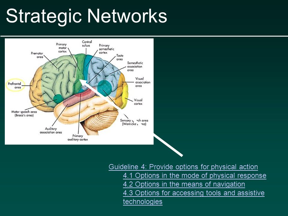Strategic Networks 6.2 Options that support planning and strategy development Examples: Embedded prompts to stop and think before acting Checklists and project planning templates for setting up prioritization, sequences and schedules of steps Embedded coaches or mentors that model think-alouds of the process Guides for breaking long-term goals into reachable short-term objectives