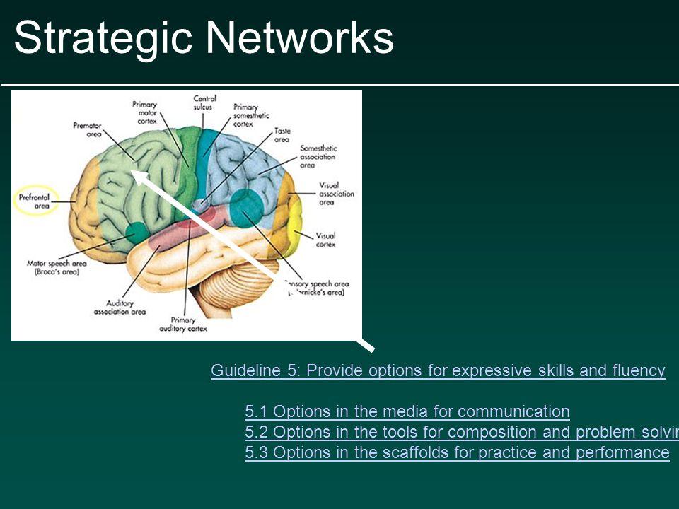 Copyright ©2007 Society for Neuroscience Johnstone, T.