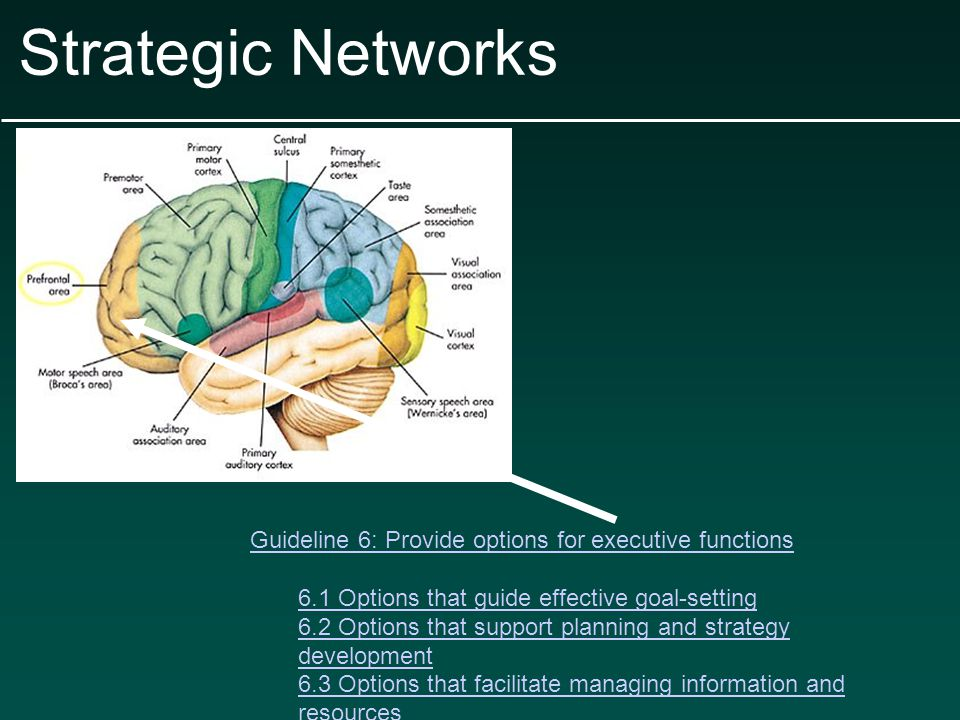 Strategic Networks Guideline 6: Provide options for executive functions 6.1 Options that guide effective goal-setting 6.2 Options that support planning and strategy development 6.3 Options that facilitate managing information and resources 6.4 Options that enhance capacity for monitoring progress