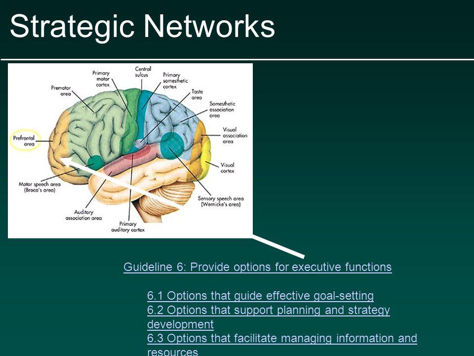 Strategic Networks 6.4 Options that enhance capacity for monitoring progress.4 Options that enhance capacity for monitoring progress Examples: Guided questions for self-monitoring Representations of progress (e.g.