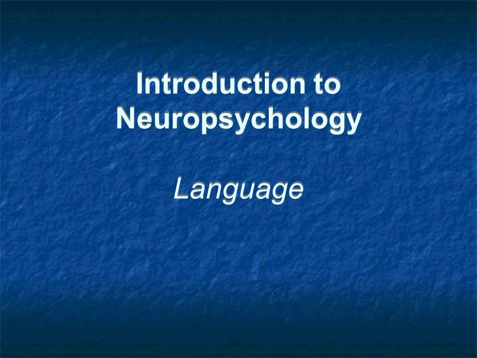Introduction to Neuropsychology Language