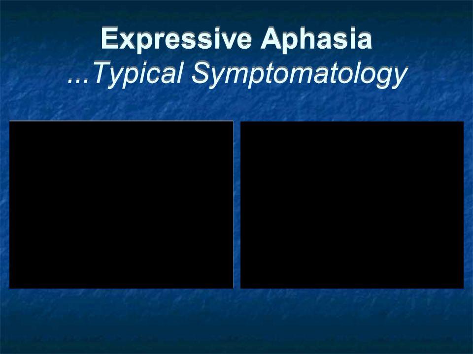 Expressive Aphasia...Typical Symptomatology