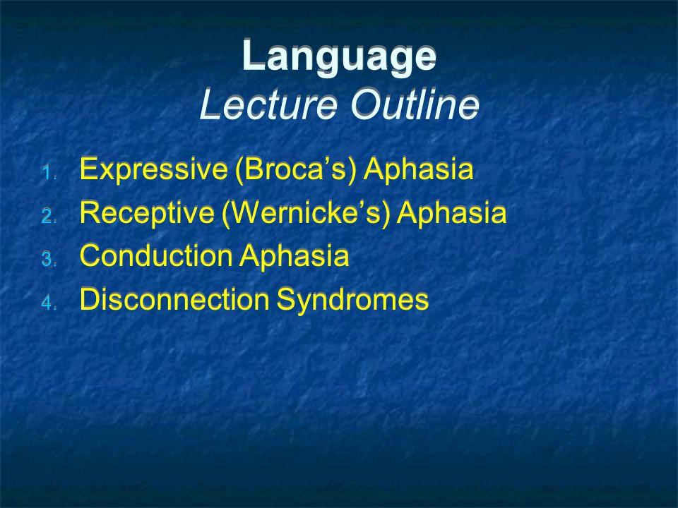 Language Lecture Outline 1. Expressive (Broca's) Aphasia 2.