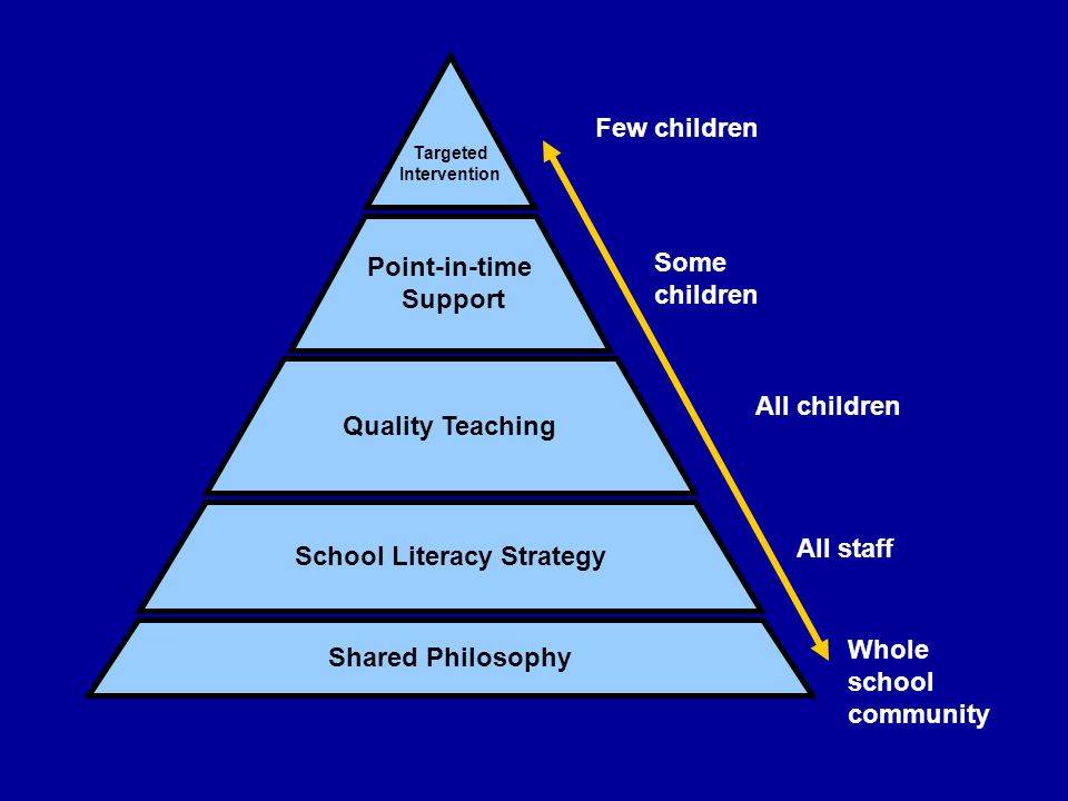 Shared Philosophy Quality Teaching Point-in-time Support Targeted Intervention Whole school community Few children All staff School Literacy Strategy All children Some children