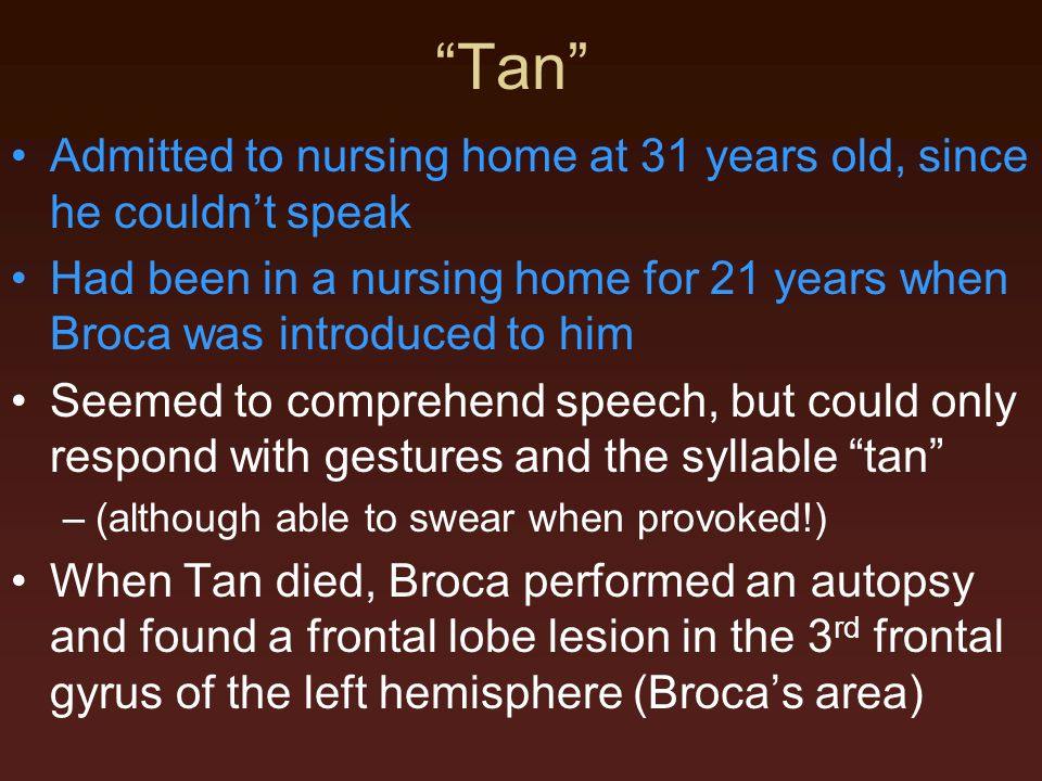 Tan Admitted to nursing home at 31 years old, since he couldn't speak Had been in a nursing home for 21 years when Broca was introduced to him Seemed to comprehend speech, but could only respond with gestures and the syllable tan –(although able to swear when provoked!) When Tan died, Broca performed an autopsy and found a frontal lobe lesion in the 3 rd frontal gyrus of the left hemisphere (Broca's area)