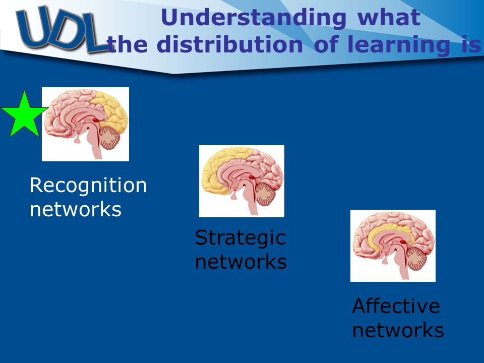 Recognition networks Strategic networks Affective networks Understanding what the distribution of learning is