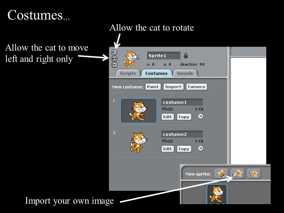 Costumes... Allow the cat to rotate Allow the cat to move left and right only Import your own image