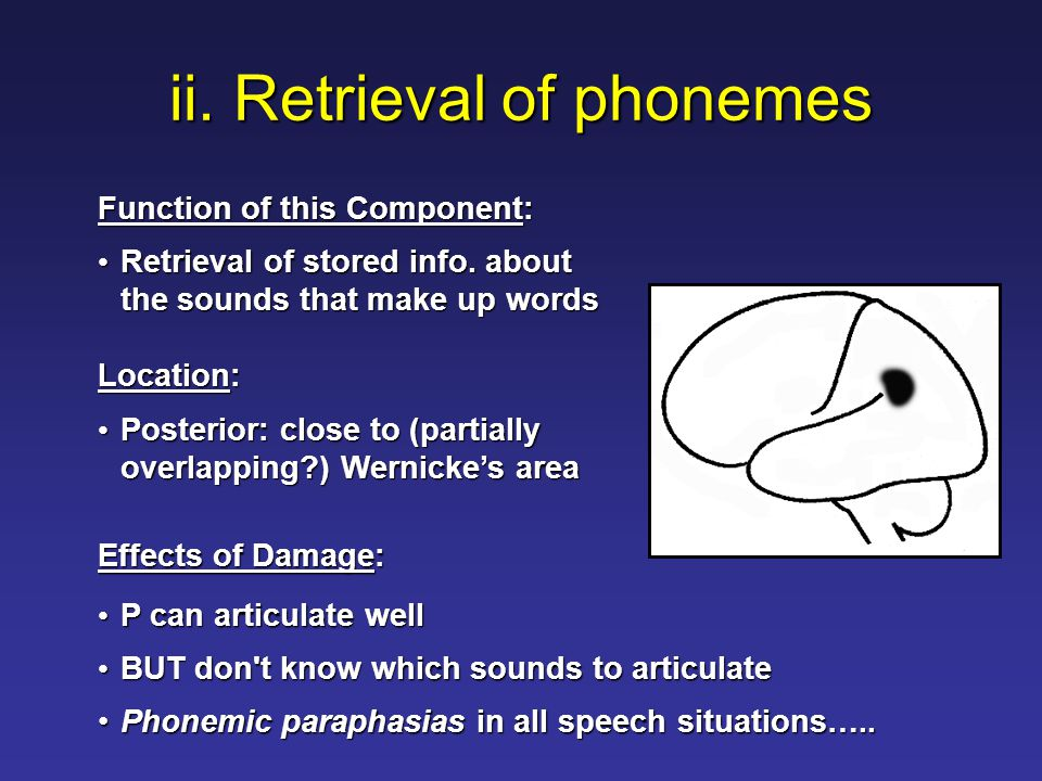 ii. Retrieval of phonemes Function of this Component: Retrieval of stored info.
