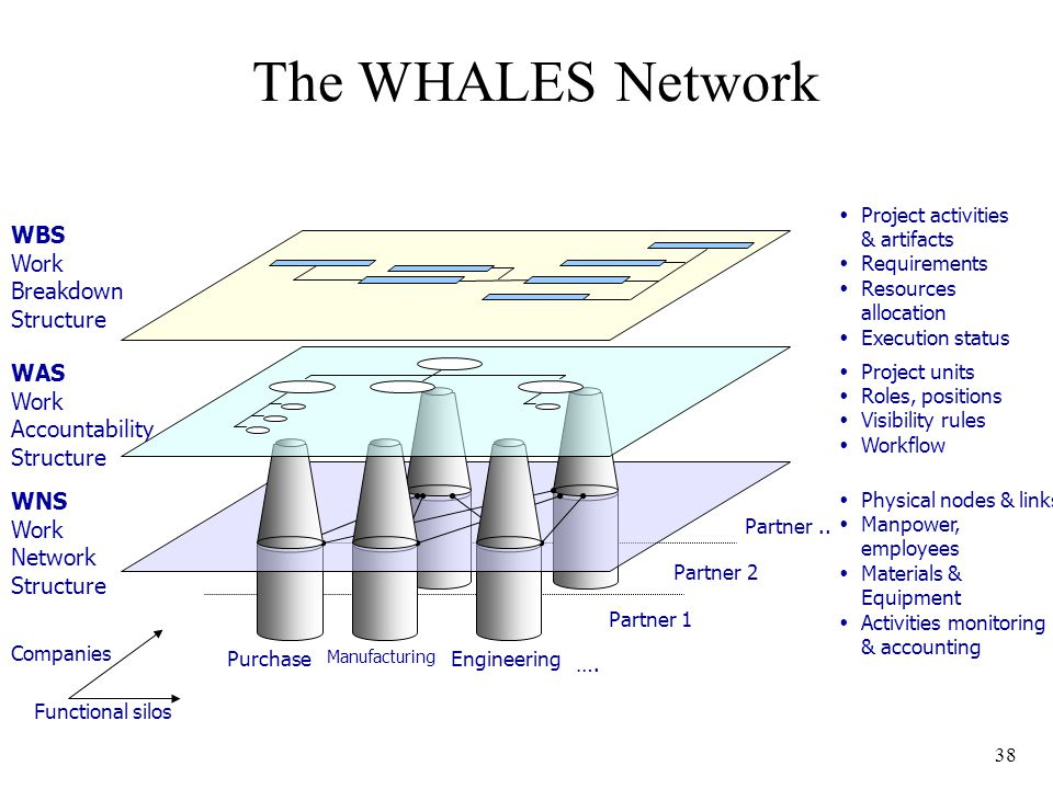 38 The WHALES Network WBS Work Breakdown Structure WAS Work Accountability Structure WNS Work Network Structure Functional silos Companies Purchase Manufacturing Engineering Partner 1 Partner 2 Partner..