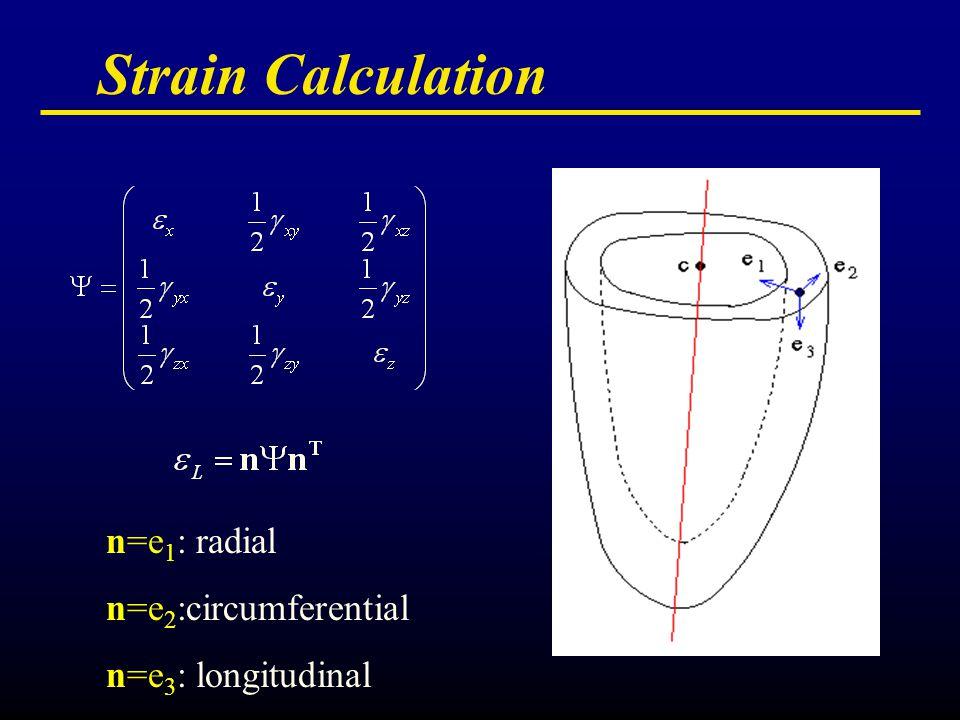 Strain Calculation n=e 1 : radial n=e 2 :circumferential n=e 3 : longitudinal