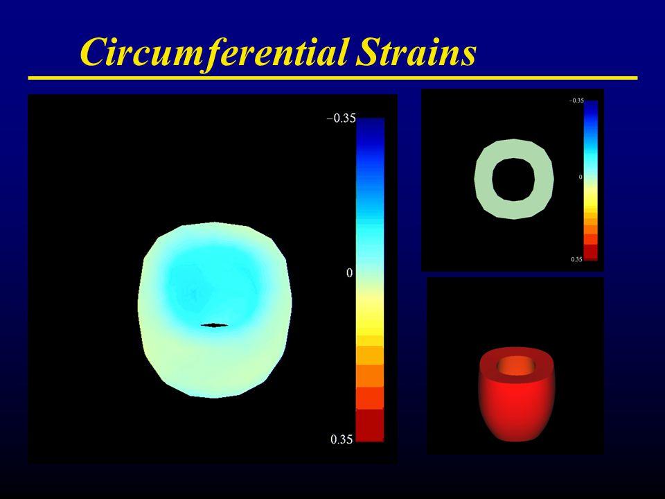 Circumferential Strains