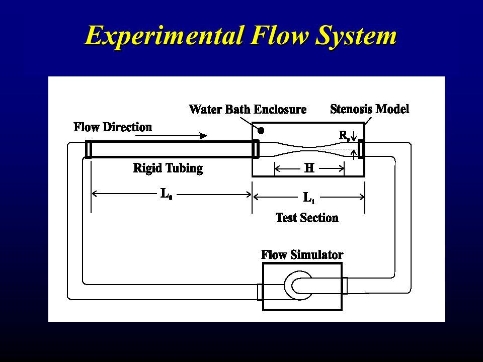 Experimental Flow System