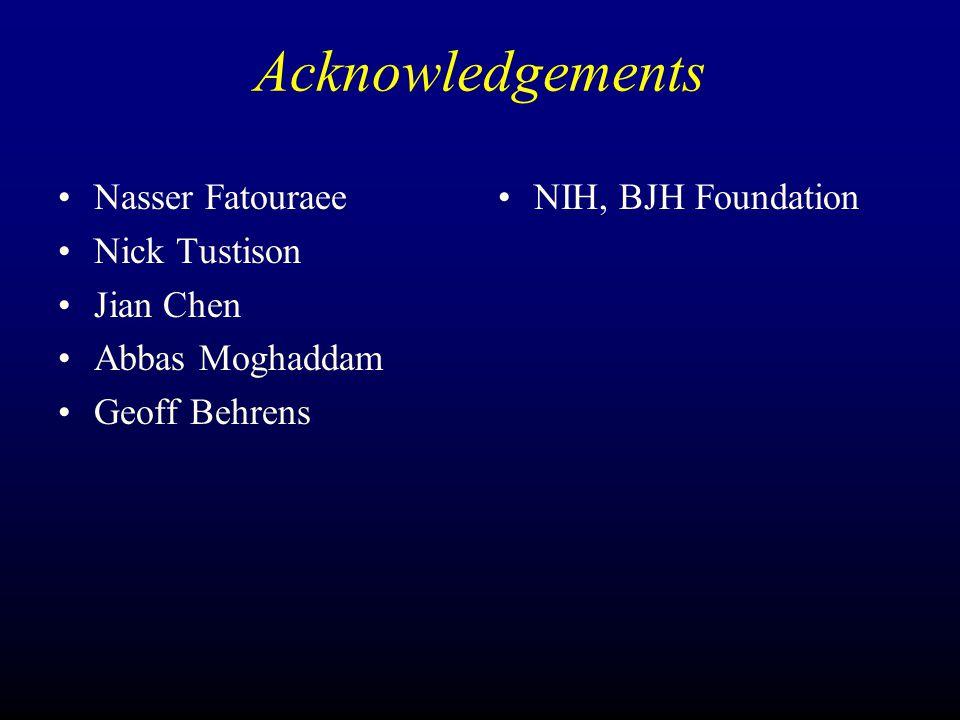Acknowledgements Nasser Fatouraee Nick Tustison Jian Chen Abbas Moghaddam Geoff Behrens NIH, BJH Foundation