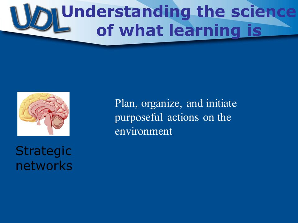 Strategic networks Understanding the science of what learning is Plan, organize, and initiate purposeful actions on the environment