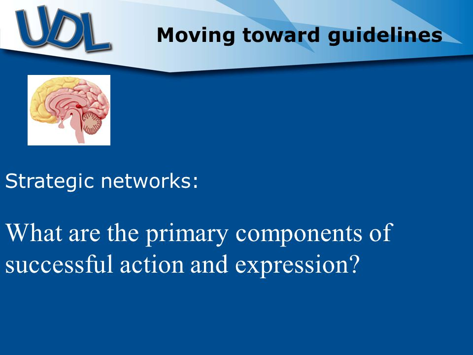 Strategic networks: What are the primary components of successful action and expression.