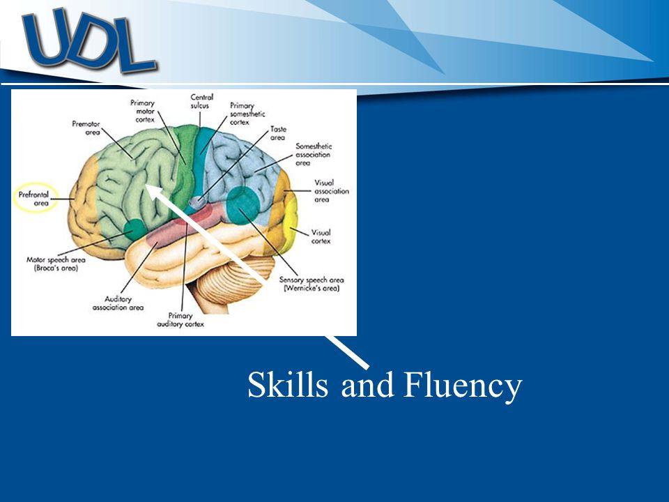 Skills and Fluency