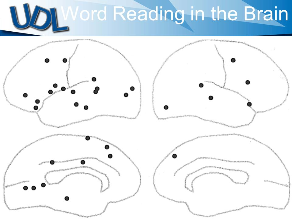 Word Reading in the Brain
