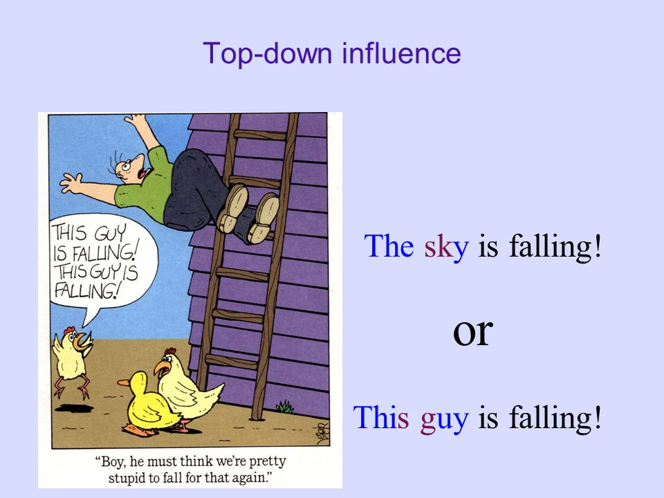 Top-down influence The sky is falling! This guy is falling! or