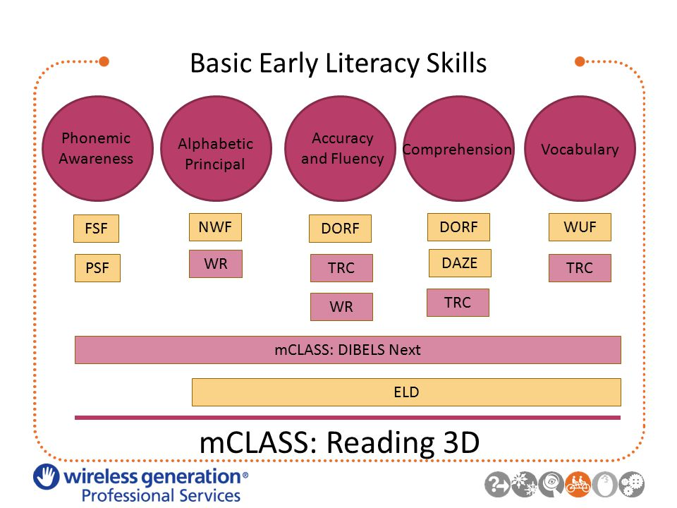 Basic Early Literacy Skills Phonemic Awareness Alphabetic Principal Accuracy and Fluency ComprehensionVocabulary FSF PSF NWF DORF WUF WR TRC mCLASS: DIBELS Next ELD mCLASS: Reading 3D DAZE