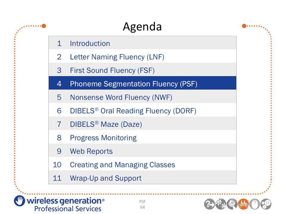 Agenda PSF 64