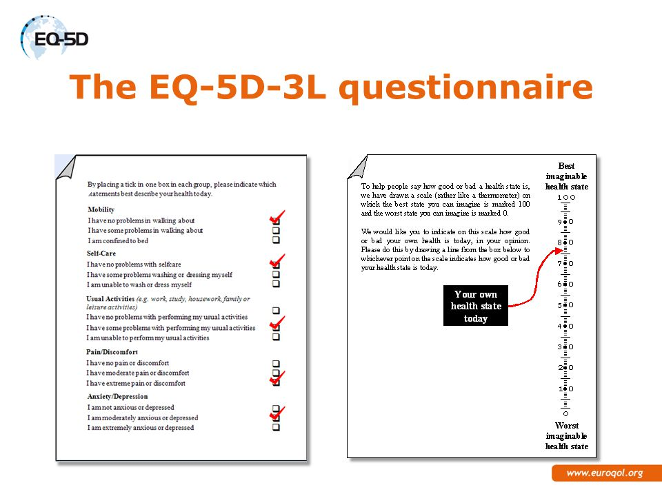 The EQ-5D-3L questionnaire
