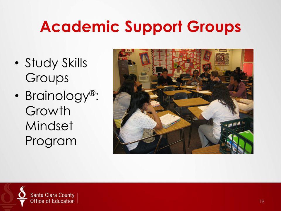 Academic Support Groups Study Skills Groups Brainology ® : Growth Mindset Program 19
