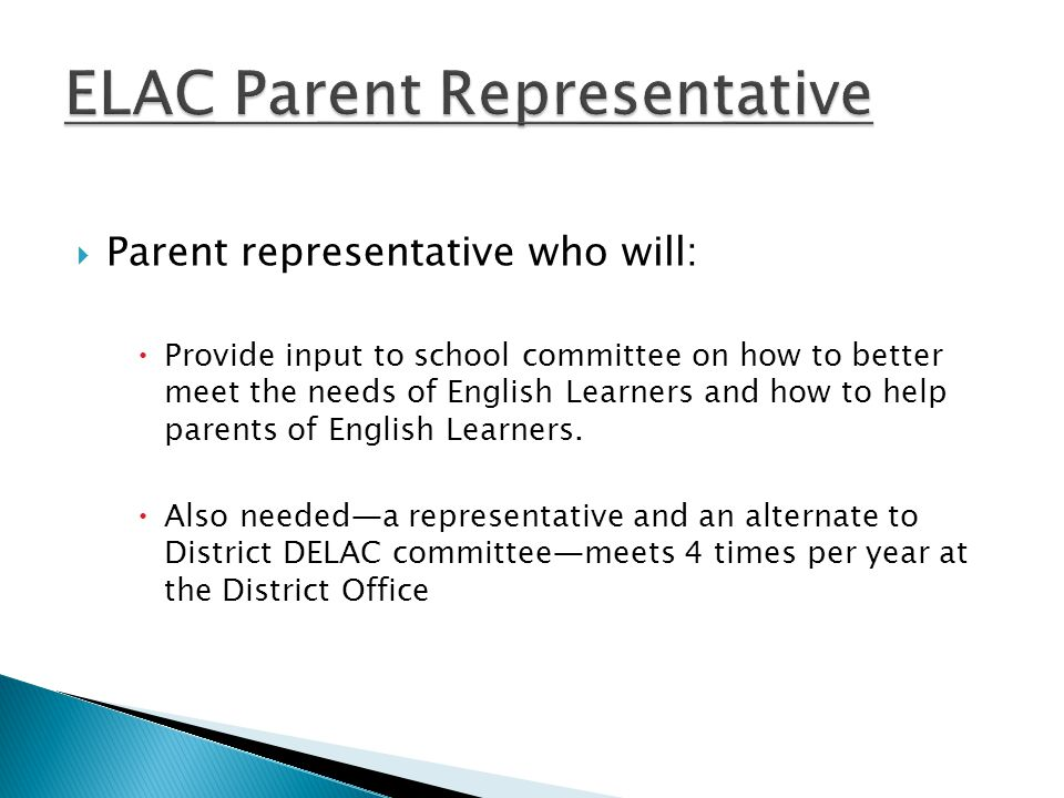  Parent representative who will:  Provide input to school committee on how to better meet the needs of English Learners and how to help parents of English Learners.