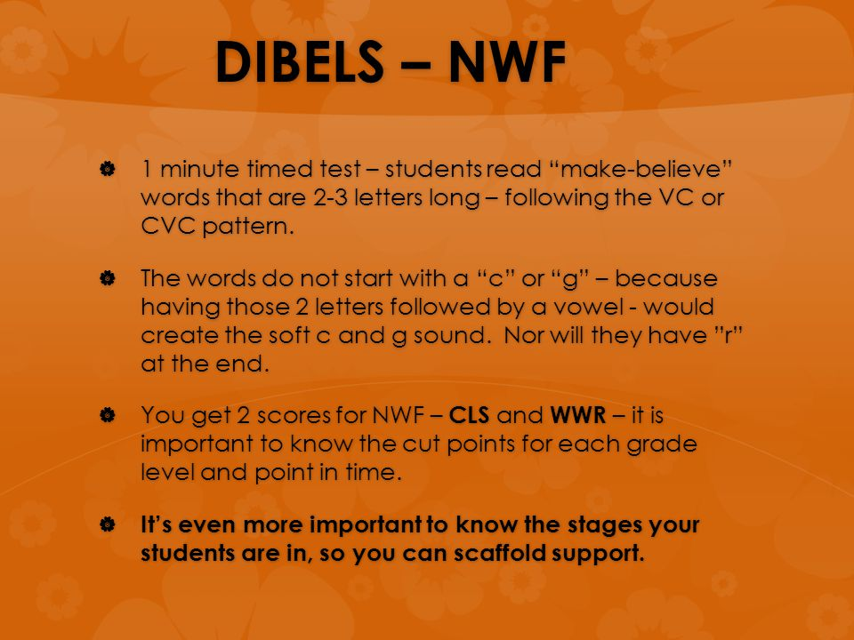 "DIBELS – NWF  1 minute timed test – students read ""make-believe"" words that are 2-3 letters long – following the VC or CVC pattern.  The words do no"