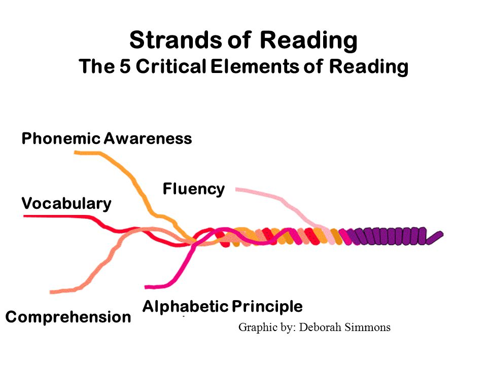 Strands of Reading The 5 Critical Elements of Reading Graphic by: Deborah Simmons Phonemic Awareness Vocabulary Comprehension Alphabetic Principle Fluency