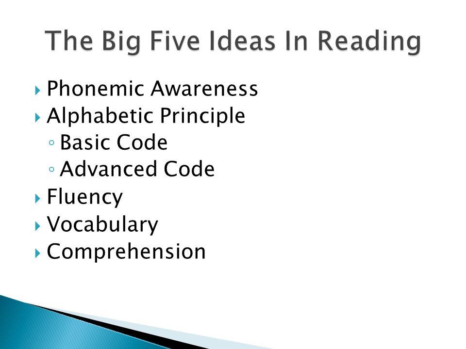  Phonemic Awareness  Alphabetic Principle ◦ Basic Code ◦ Advanced Code  Fluency  Vocabulary  Comprehension