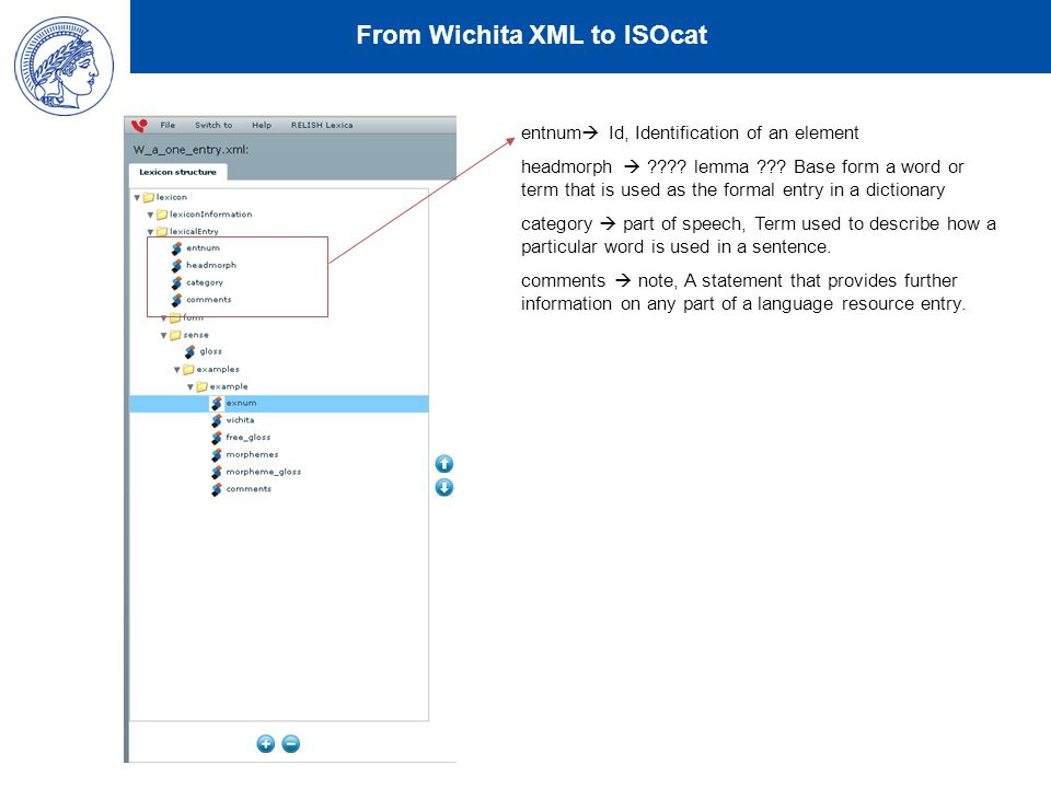 From Wichita XML to ISOcat entnum  Id, Identification of an element headmorph  .