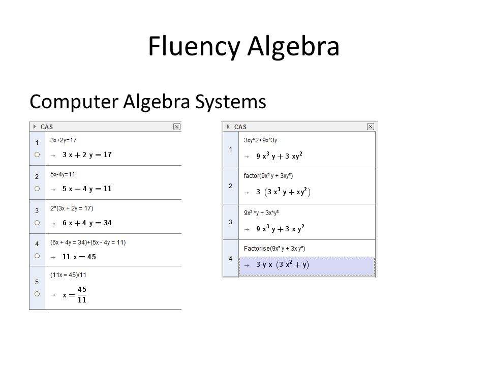 Fluency Algebra Computer Algebra Systems