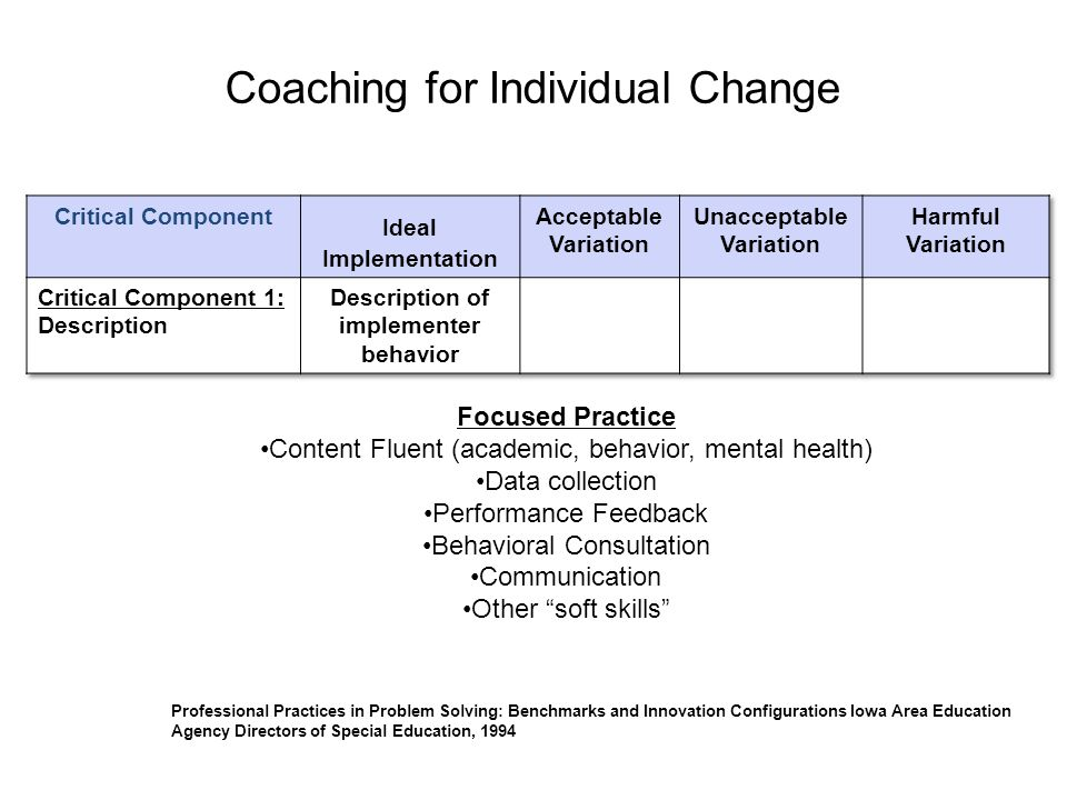 Coaching for Individual Change Professional Practices in Problem Solving: Benchmarks and Innovation Configurations Iowa Area Education Agency Director