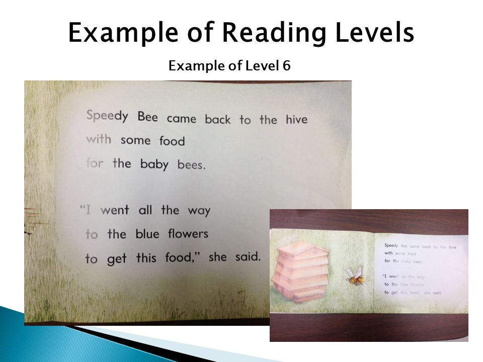 Example of Reading Levels Example of Level 6