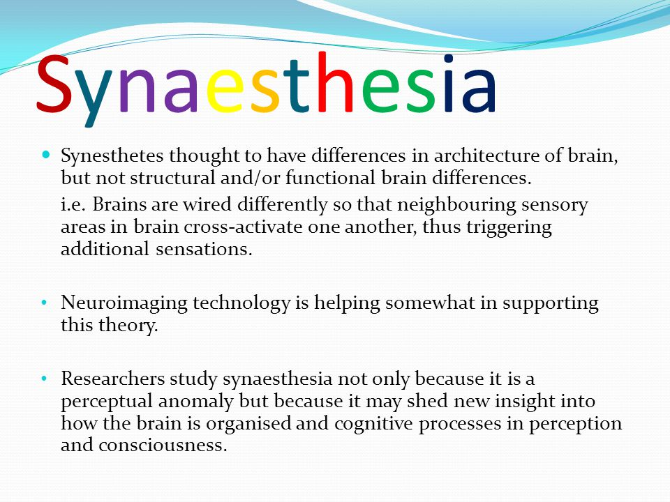 Synaesthesia Synesthetes thought to have differences in architecture of brain, but not structural and/or functional brain differences.