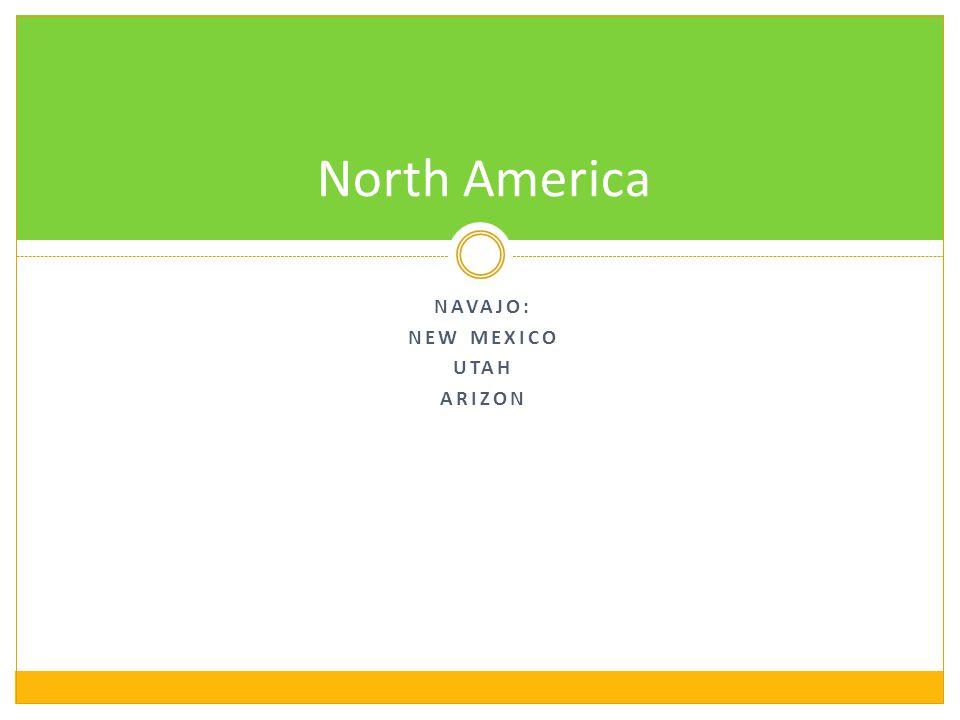 NAVAJO: NEW MEXICO UTAH ARIZON North America