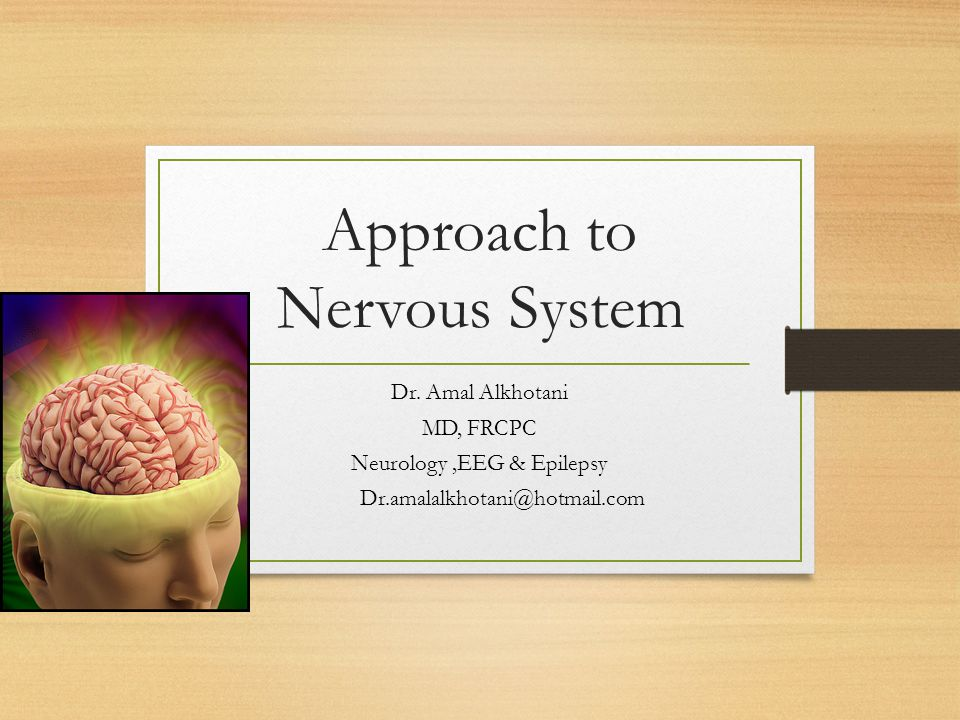 Approach to Nervous System Dr.