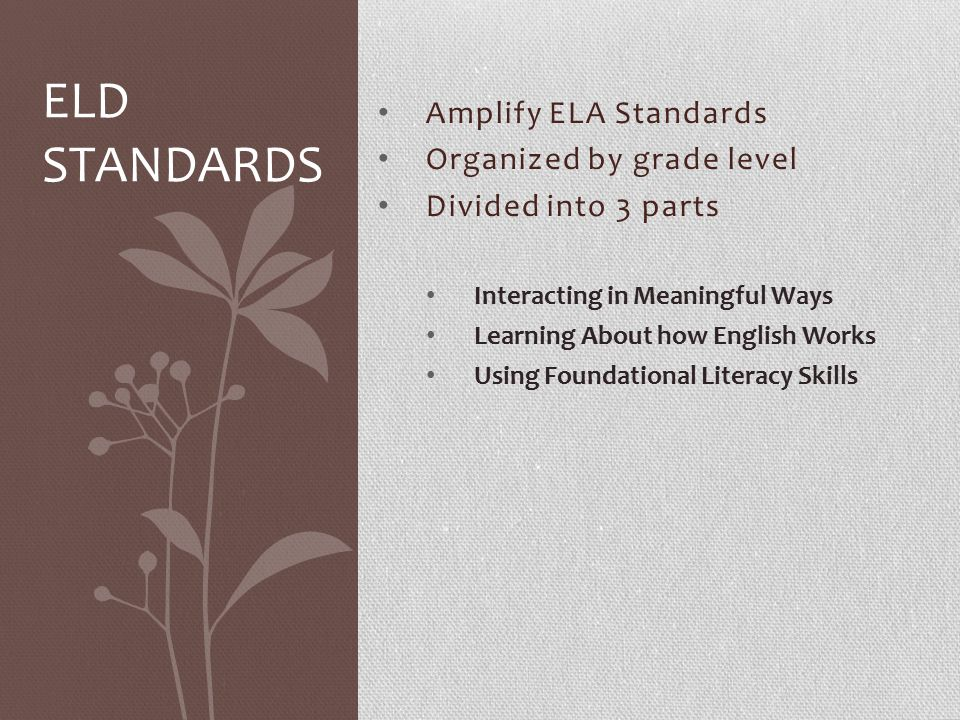 Amplify ELA Standards Organized by grade level Divided into 3 parts Interacting in Meaningful Ways Learning About how English Works Using Foundational Literacy Skills ELD STANDARDS