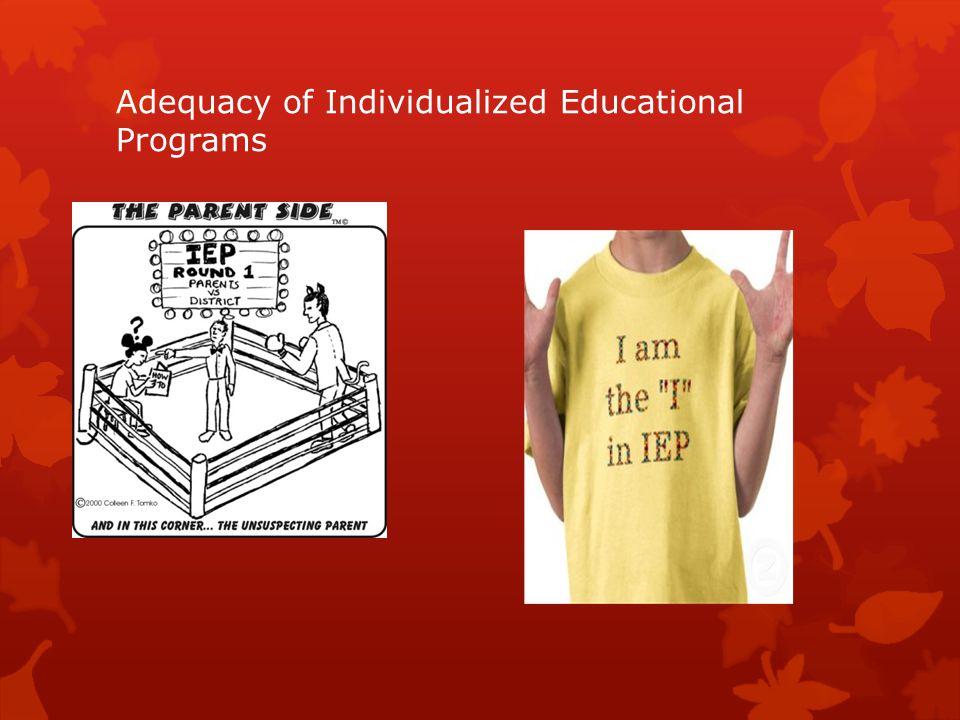 Adequacy of Individualized Educational Programs