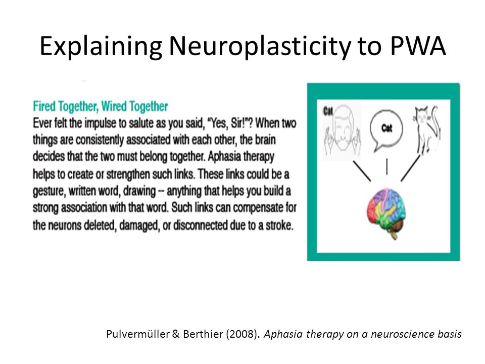 Explaining Neuroplasticity to PWA Pulvermüller & Berthier (2008). Aphasia therapy on a neuroscience basis
