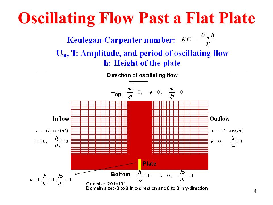 4 Oscillating Flow Past a Flat Plate