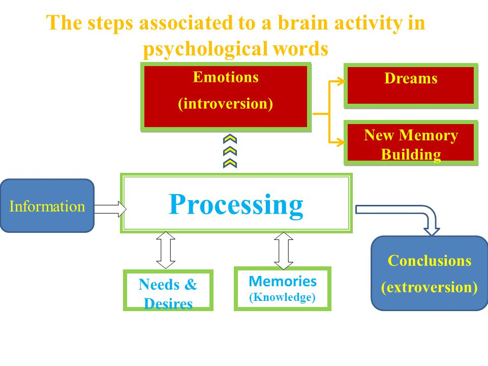 The steps associated to a brain activity in psychological words Emotions (introversion) Emotions (introversion) Processing Needs & Desires Memories Dreams New Memory Building Information Conclusions (extroversion) (Knowledge)