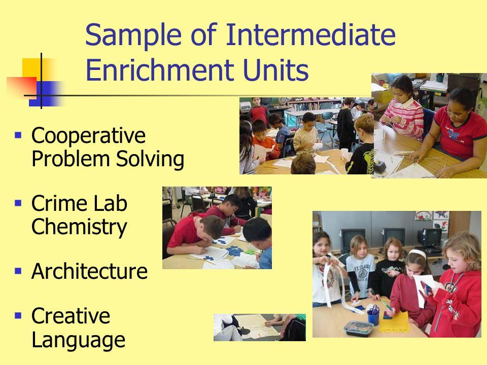 Sample of Intermediate Enrichment Units  Cooperative Problem Solving  Crime Lab Chemistry  Architecture  Creative Language