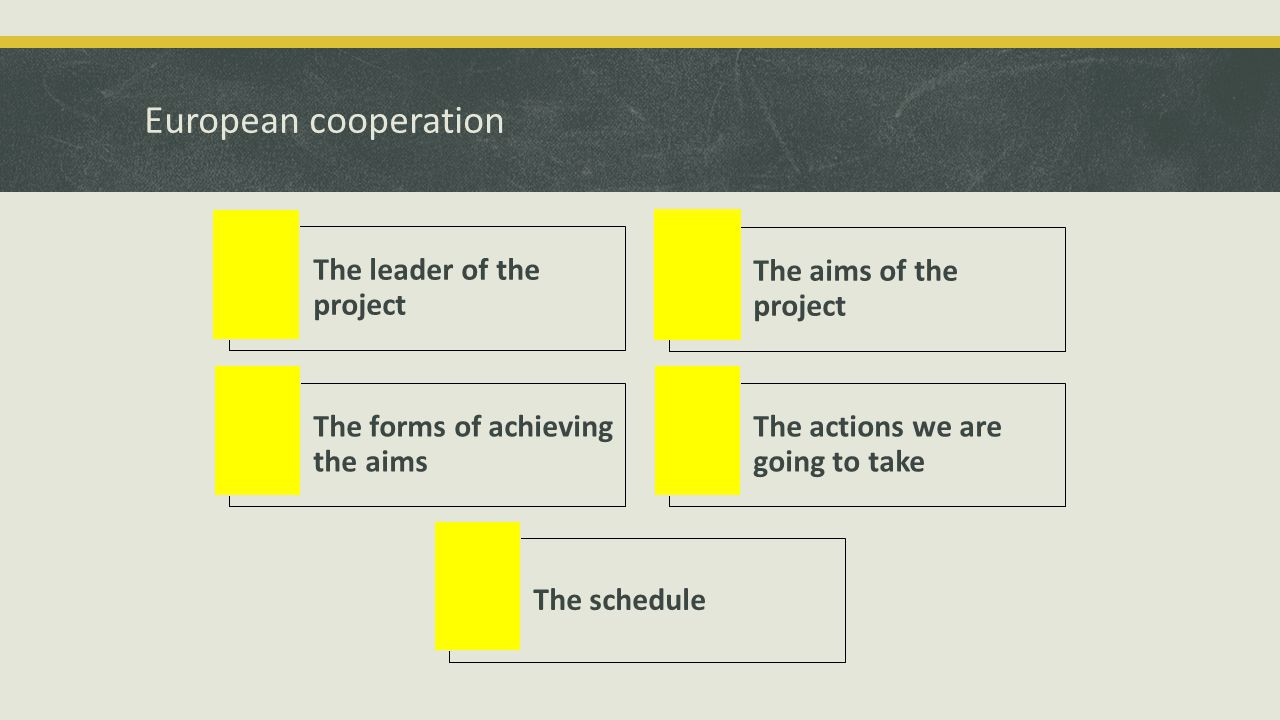 European cooperation The leader of the project The aims of the project The forms of achieving the aims The actions we are going to take The schedule
