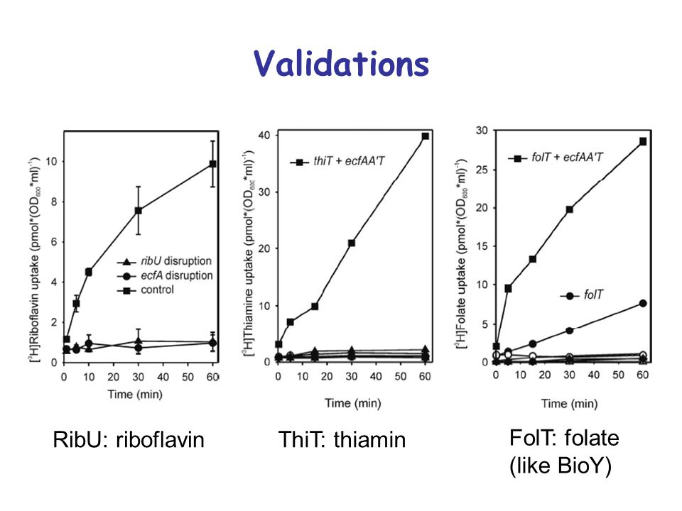 Validations RibU: riboflavinThiT: thiamin FolT: folate (like BioY)