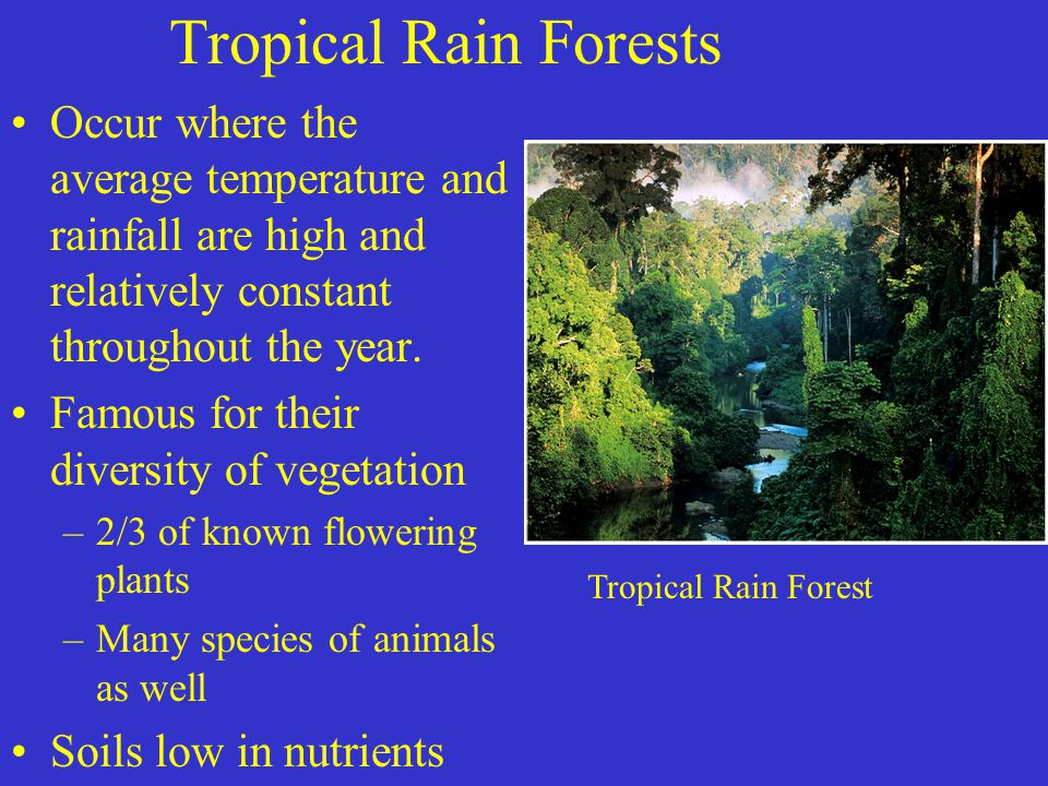 Tropical Rain Forests Occur where the average temperature and rainfall are high and relatively constant throughout the year.
