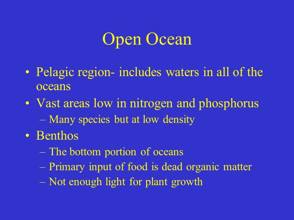 Open Ocean Pelagic region- includes waters in all of the oceans Vast areas low in nitrogen and phosphorus –Many species but at low density Benthos –The bottom portion of oceans –Primary input of food is dead organic matter –Not enough light for plant growth