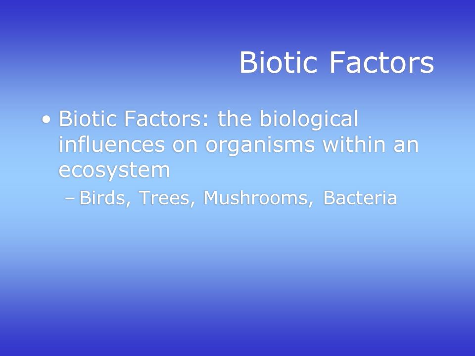 Biotic Factors Biotic Factors: the biological influences on organisms within an ecosystem –Birds, Trees, Mushrooms, Bacteria Biotic Factors: the biological influences on organisms within an ecosystem –Birds, Trees, Mushrooms, Bacteria